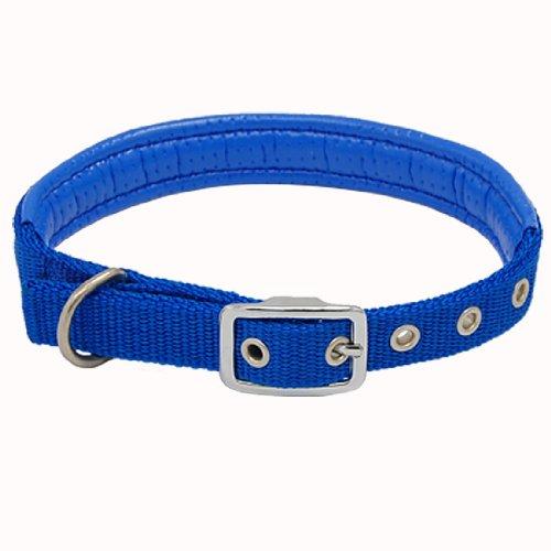 blu Nylon fibbia cane animaletto collo collare e cinturino cinghia