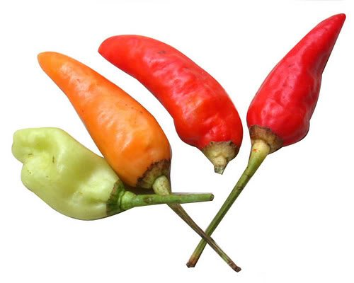 30-birds-eye-chili-pepper-chiltepin-pepper-capsicum-frutescens-vegetable-seeds-by-seedville