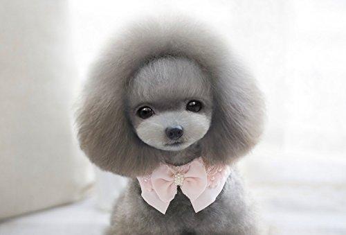 Niedliche Haustier Hund Katze Halskette Halsband Krawatte Spitzen Bogen Perlen Kragen Rosa