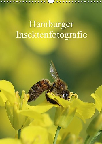 hamburger-insektenfotografie-wandkalender-2017-din-a3-hoch-insekten-faszinierende-bunte-wunderwelt-m