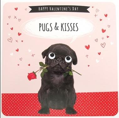 greeting-card-plk4211-valentines-day-pugs-valentines-day-from-the-froot-loop-range