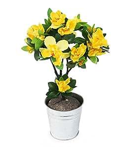 Closer Natura HBC001YW - Rod azalea artificiale, 35 cm, di colore giallo