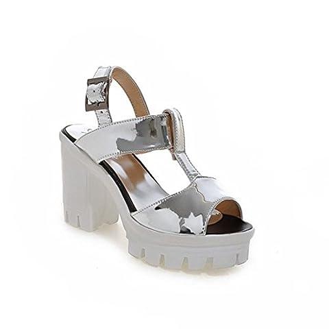 Women's Fashion Ankle Strap Square High Heel Platform Sandals Silver / US 8