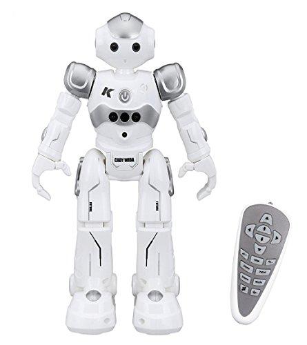 Virhuck R2 Ferngesteuerter Roboter, Intelligente Programmierung Geste Sensing RC Robot Kit, Tanzen Singen Walking RC Spielzeug für Kinder Unterhaltung, 500mAh, USB Laden - Grau