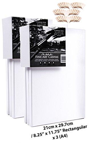 artdale 6Pack Standard Edge 17mm gerahmt blanko Pre gespannt Leinwände, dreifach grundiert weiß 21x 29,7Rechteck (A4Größe) Holz Rahmen 100% Baumwolle Student/Künstler Art Leinwand Öl Acryl & mehr