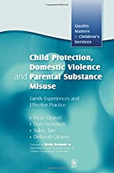 Child Protection, Domestic Violence and Parental Substance Misuse: Family Experiences and Effective Practice (Quality Matters in Childrens Services)
