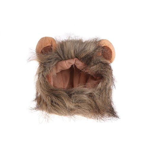 ZOOMY Katze Lions Mähne Perücke Mütze Hut Niedlich Cosplay Kostüm für Katze Hund Haustier Kaninchen Weihnachten Kleid mit Ohren - Doppel Farben Ohren 2# (Für Halloween Doppel-kostüme)