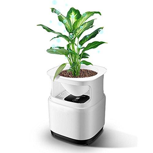 Purificador de aire puede planta pequeña Mini hogar retirar formaldehído segunda mano humo iones negativos, dormitorio, oficina escritorio AC