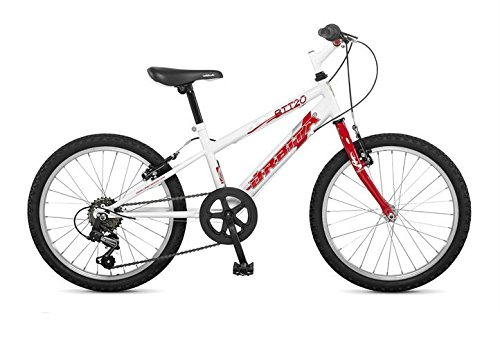 Orbita Btt 20 H 6 Speed 20 Wheel Mountain Bike White Amazon Co