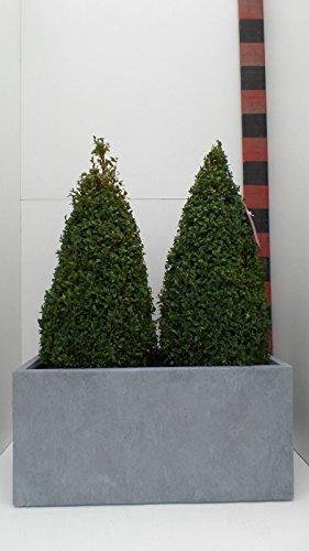 'Seau à 76 cm de largeur : Jardinière rectangulaire bac à fleurs Pot ECO Composite \\