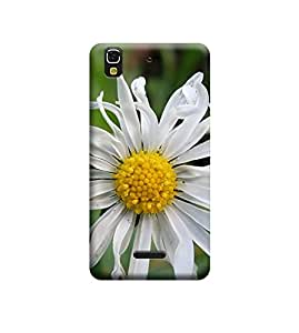 Ebby Premium Printed Back Case Cover With Full protection For Micromax Yu Yureka AQ5510 / Yureka Plus AO5510 (Designer Case)