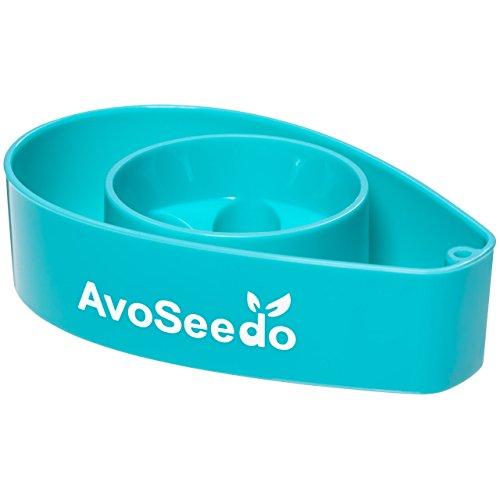avoseedo-plastique-bol-evergreen-green-blue-transparent-blue