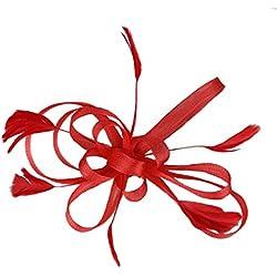 dressfan Accesorios para el Cabello de Moda Tocado de las Mujeres Nupciales Fascinador Cinta de Plumas Pinzas para el Cabello para la Boda Banquete de Fiesta con la Flor
