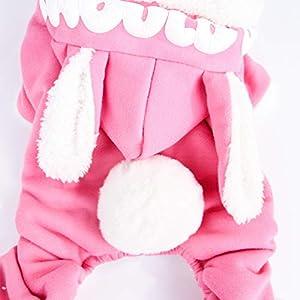 TianBin Vetement Chien/Chat Sweat a Capuche Chiot Hiver Veste Petit Chien Teddy Chihuahua Manteau Habillement