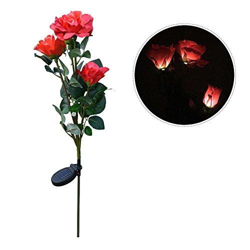 Heilsa Solar-LED-Lichter, 81,50 Zoll Rosenform Landschaft Dekorative Licht Garten Outdoor Solar Lampe für Geburtstag Party Outdoor Party, rot (Beleuchtung Portfolio-landschaft)