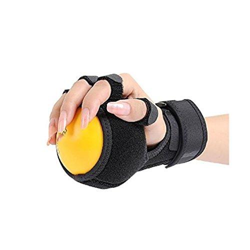 LL-Doigtoir Doigt Dispositif d'entraînement Équipement Ball Attelle Main Hémiplégie Rééducation Formation Main Doigt Orthèse