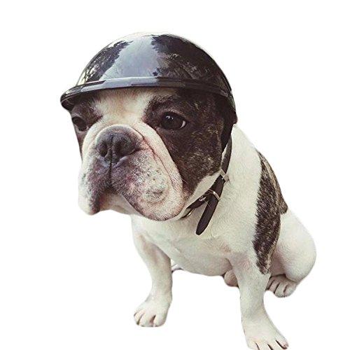 Bolony Cute Pets Puppy Motorrad Schützen Helme Kleiner Hund Katze Biker Hat Gap Teddy Husky Kopf Kostüme Zubehör