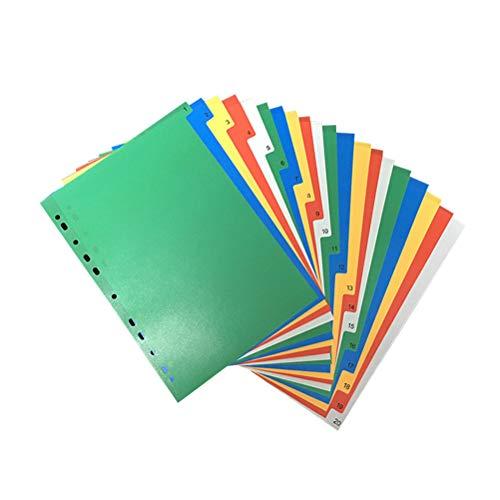 20 Seiten A4 Bunte Indexseite Klassifizierte Etiketten Kunststoffteiler (Nummer in Farbe) -