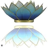 TRIMONTIUM Photophore Ciel de Bavière en Forme de Fleur de Lotus à Trois Feuilles, Coquillage de Capiz Blanc/Bleu 14 x…