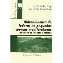 Hidrodinámica de laderas en pequeñas cuencas mediterráneas (Estudios y Ensayos)