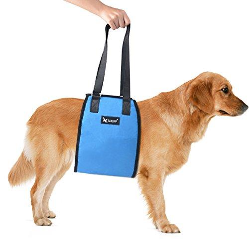 Glitz Star Weich Blau Hundegeschirr,verstellbares Haustier Brustgeschirr,Powergeschirr,Atmungsaktiv Einfach sicher Kontrolle Köper für Mittlere Große Hunde (L)