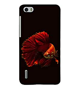 printtech Unique Fish Back Case Cover for Huawei Honor 6