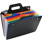 Irich A4 Fächermappe, PVC Accordion File Folder Organizer, Bunte Wasserdicht Tragbar Datei Ordner mit Griff für Büro Home Office Business (13 Taschen, 33 * 30 * 3CM, Schwarz)