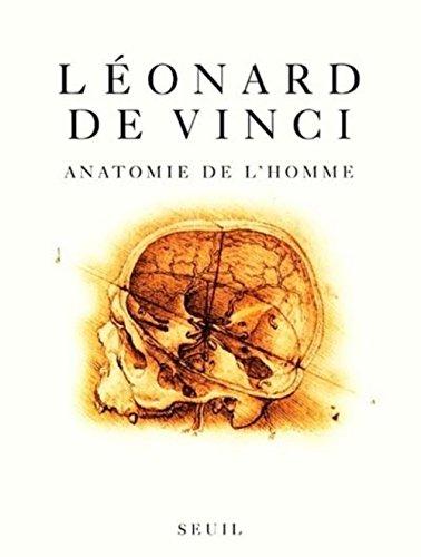 Anatomie de l'homme
