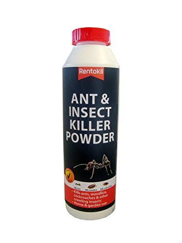 Rentokil Ant & Insect Killer Poudre 300g