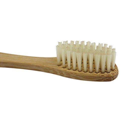 SIDCO Bambus Zahnbürste im 12er Pack - 2