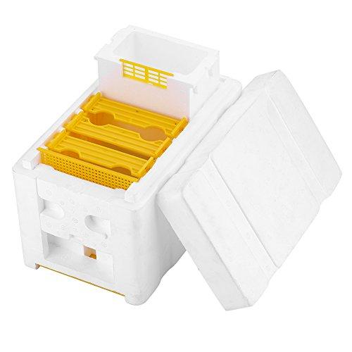 Asixx Bee Bestäubung Box, Ernte Bee Hive Box Honig Beehive Rahmen Kit Perfekt für die Gartenbestäubung