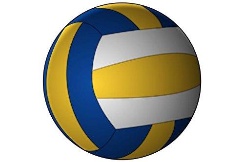 Volleyball Schlüsselanhänger Ball weiß gelb blau 4cm
