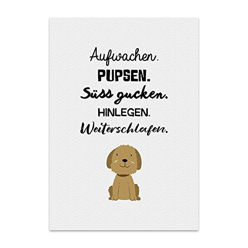 Kunstdruck, Poster mit Spruch – AUFWACHEN UND PUPSEN – lustiges Typografie-Bild auf hochwertigem Karton - Plakat, Druck, Print, Wandbild mit Zitat / Aphorismus als Geschenk und Dekoration zum Thema Hund und Welpen von TypeStoff (30 x 40 cm)