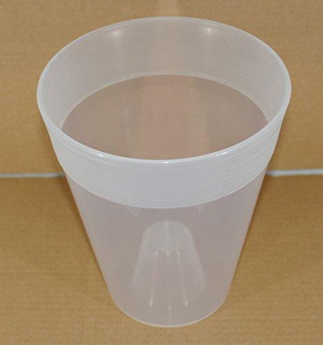Idel - Vase transparent pour orchidée avec fond surélevé - 15 cm - Blanc
