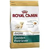 Royal Canin Golden Retriever Junior 12 kg, 1er Pack (1 x 12 kg)