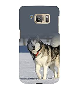 printtech Nature Animal Siberian Dog Back Case Cover for Samsung Galaxy S7 / Samsung Galaxy S7 Duos with dual-SIM card slots