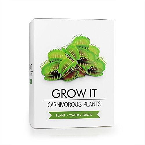 Monsterzeug Fleischfressende Pflanzen im Doppelpack, Kannenpflanze und Venusfliegenfalle Selber säen, Saatgut Zum Selber züchten, Venusfalle Samen