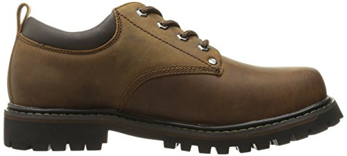Marrone Scuro Gatti Homme Oxford Tom Skechers pwqXw