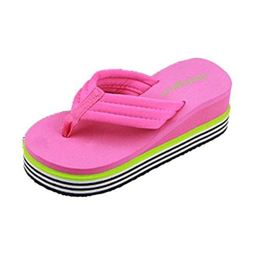 Preisvergleich Produktbild Amlaiworld Frauen Schuhe,  Sommer Sandalen Slipper Indoor Outdoor Badelatschen Badeschuhe (37,  Hot Pink)