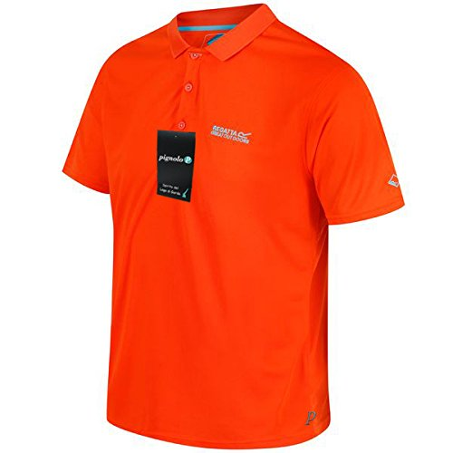 Peer Herren-Polo-Shirt Regatta schnelltrocknend mit Feuchtigkeitstransport in verschiedenen Farben erhältlich. Für Wandern und Freizeit, Lasure. Unser Sondermodell Peer Dark-Orange