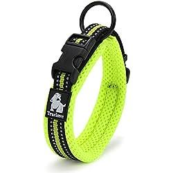 Petcomer Cuello de perro con Anilla para Correa Collar de seguridad Ajustable Cómodo para Perros Pequeños Medianos o Grandes (XS 30-35cm, Verde)