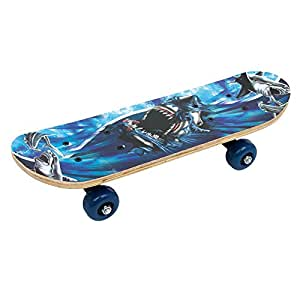 Legler - 2020022 - Mini Skateboard - Requin