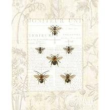 feelingathome-Impresi—n-artistica-Bee-botanique-cm96x77-poster-lamina-para-cuadros
