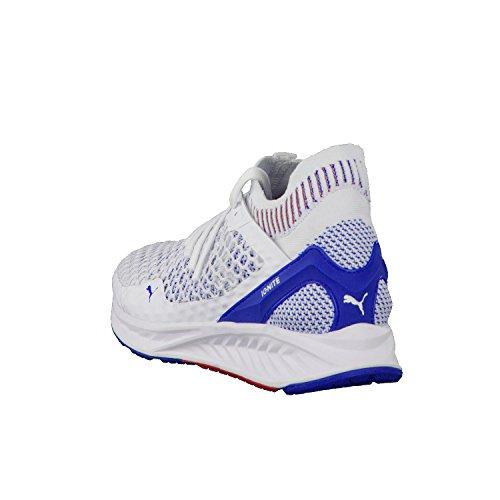 Puma Ignite Netfit, Chaussures Multisport Outdoor Homme Blanc (White-lapis Blue-toreador)
