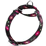 Dazzber Martingal Halsbänder für Hunde, Einstellbar-Heavy Duty- Weiche-Glatte-Leichtes Gehen Sie den Hund für Große/Klein Hunde
