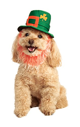 Rubies Costume Company St. Patty 's Day Pet Kostüm Hat mit Bart (St Patty Day Kostüm)