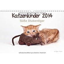 Katzenkinder 2014 - Süße Stubentiger - by Regine Heuser (Wandkalender 2014 DIN A4 quer): Beeindruckende Bilder von Katzenkindern (Monatskalender, 14 Seiten)