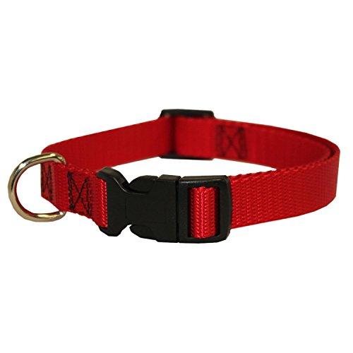 Fandecie Pet Dog Collar regolabile resistente duraturo è adatto Small, Medium, Large tessuto di qualità superiore cani Pet Walking o di formazione Collare - Formazione Sarà Formazione