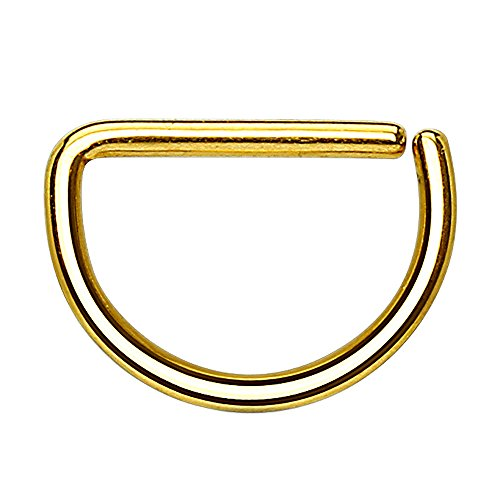 Piercingfaktor Universal D Ring Piercing Septum Tragus Helix Ohr Nase Lippe Brust Intim Nasenpiercing Lippenpiercing Gold 0,8mm x 8mm - Antik-ring-set