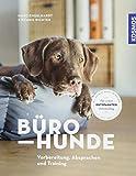 Bürohunde: Vorbereitung, Absprachen und Training